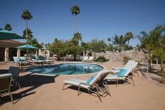 palm gardens pool 2